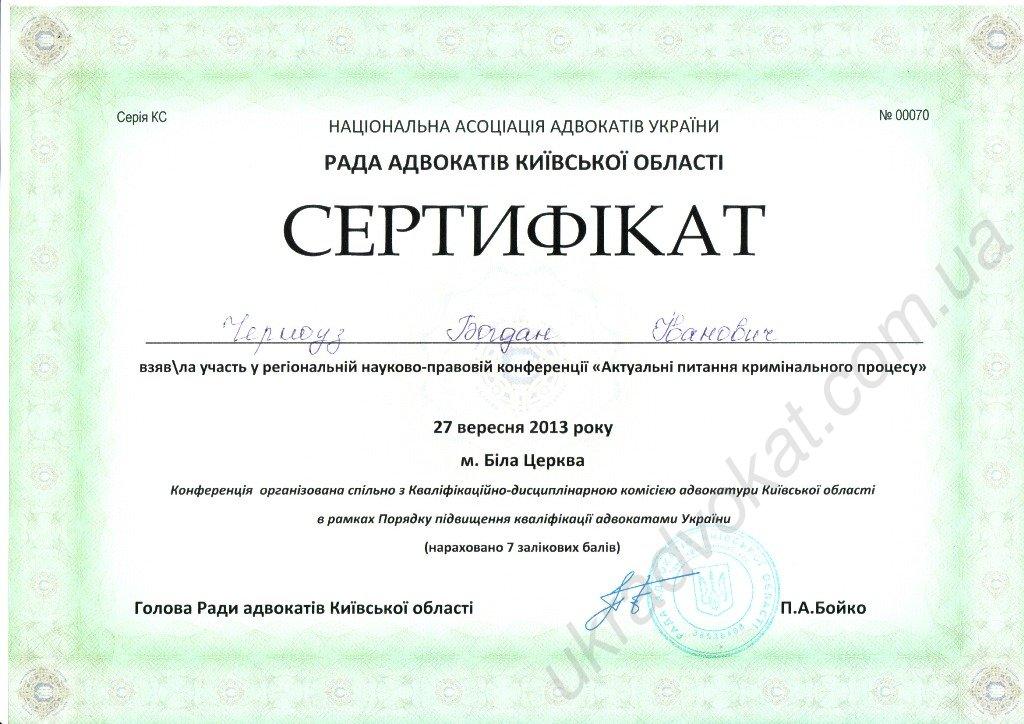 Актуальні питання кримінального процесу (27.03.2013)